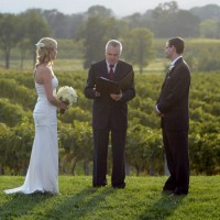 Wedding Crashing: A Scenic Vineyard Fete