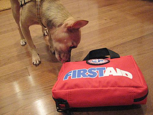 Fab Freebie: Furry First Aid