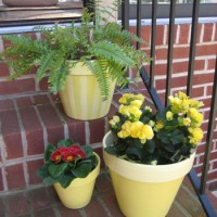 How To Seal & Paint A Terra Cotta Planter