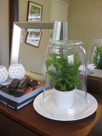 The Easiest Glass Terrarium You'll Ever Make