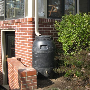 how-to-make-a-rain-barrel-t