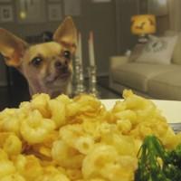 Fab Freebie: Supper Management