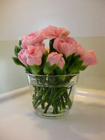 Budget Blooms: Pretty In Pink