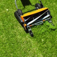 The Reel World: Trying Out An Eco Friendly Reel Mower