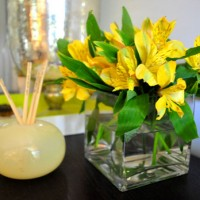 Budget Blooms: Sunny Delights