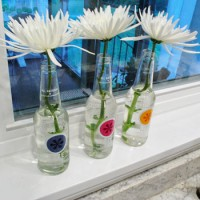 Budget Blooms: Some Sweet Izze Soda Bottle Vases