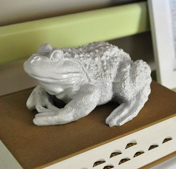 ceramic-frog-after-spraypai