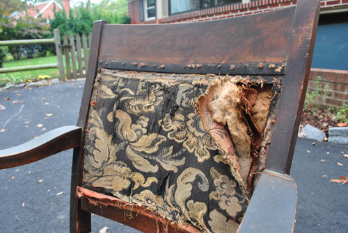 Calling All Upholstery Experts