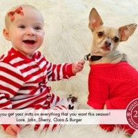 Dog And Baby Christmas Card Ideas
