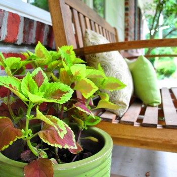 Slight Porch Progress (A Quick & Easy Outdoor Update)