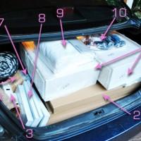 Anatomy Of An Ikea Visit