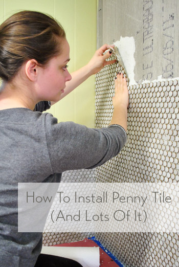 How To Install A Wall Of Penny Tile