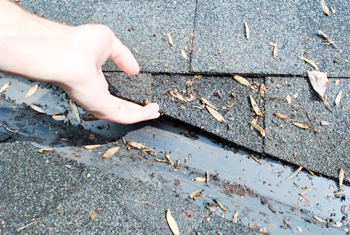 Why Is My Roof Leaking? (How We Fixed Ours Ourselves)