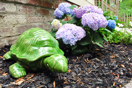 May Superlatives: Ninja Turtles & Hairy Sherry