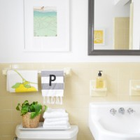 Cheap & Charming: Our $50 Bathroom Makeover
