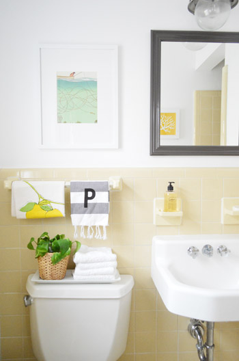 Cheap & Charming: Our $51 Bathroom Makeover