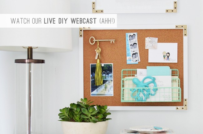 4 Watch Our Live DIY Webcast