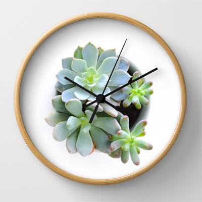Succulent Clock
