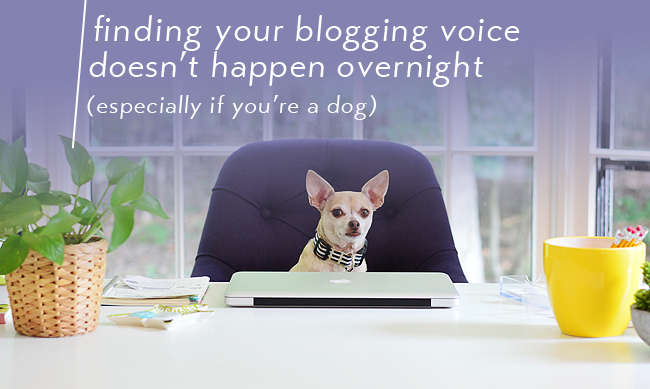 tip for blogging - finding your blogging voice doesn't happen overnight