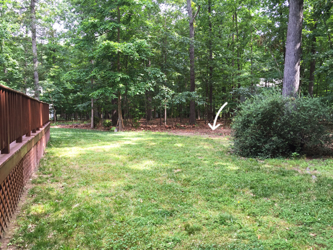 Shed-Before-Yard-From-Corner-With-Arrow