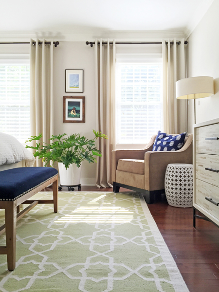 hope-philodendron-house-plant-easy bedroom