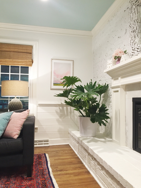 hope-philodendron-potted-indoor white living room