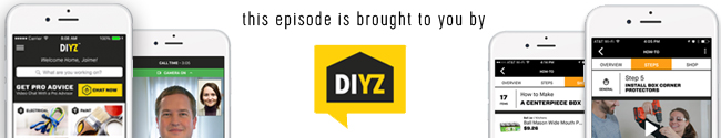 brought-to-you-by-diyz