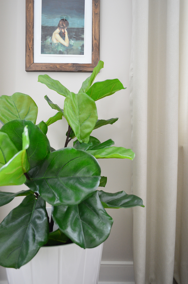 The Best Faux Fiddle Leaf Fig I\'ve Ever Seen   Young House Love