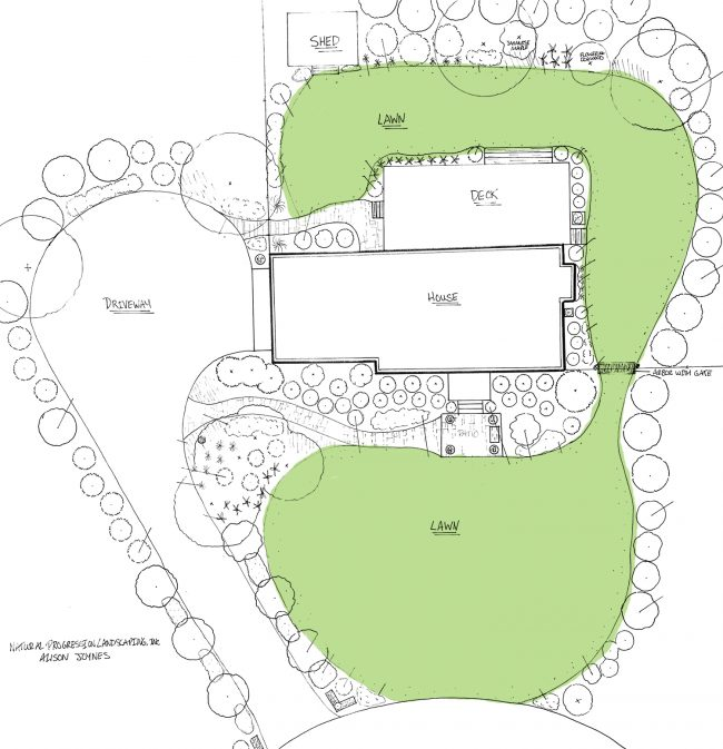 landscape architect drawn landscape plan