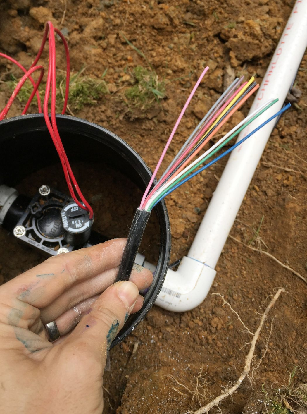 Irrigation Valve Wires Colors Out Young House Love Wiring Cable