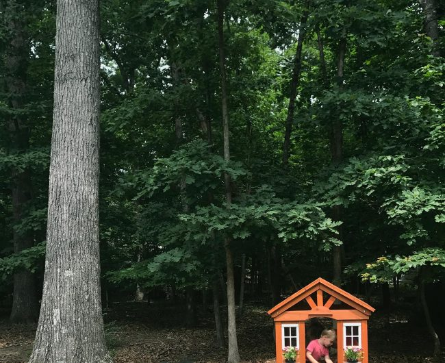 A Little Wooden Playhouse In The Woods