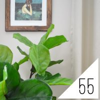 #55: What's Feng Shui? And Are We Screwing It Up?