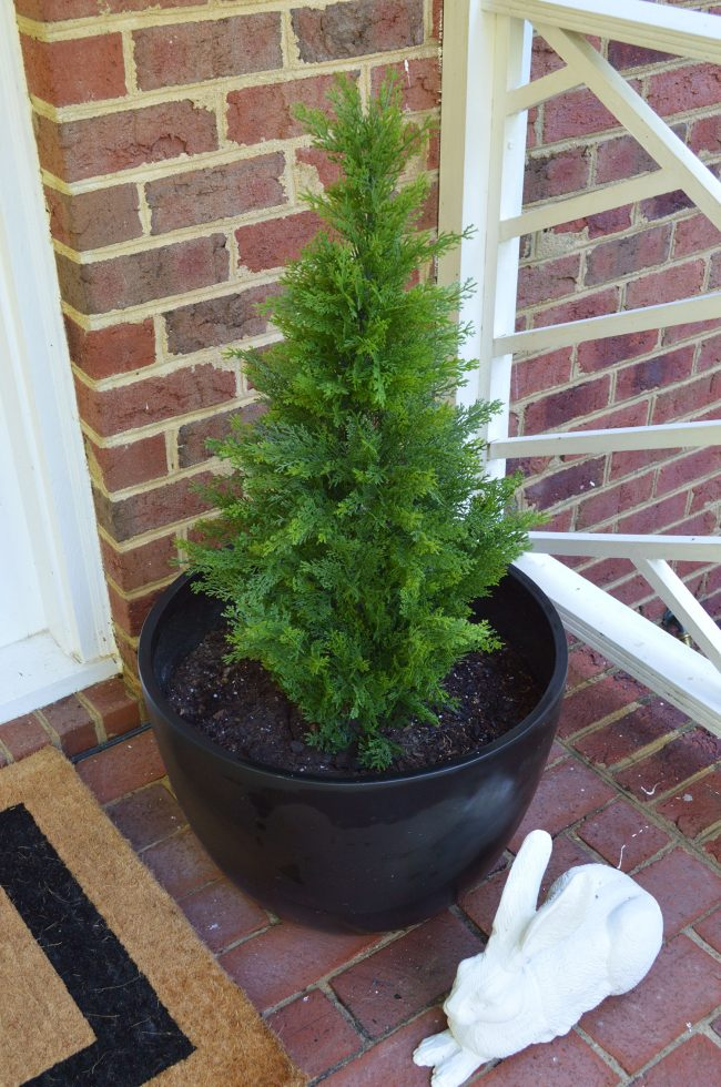 Front Porch Fake Plant Evergreen Overhead