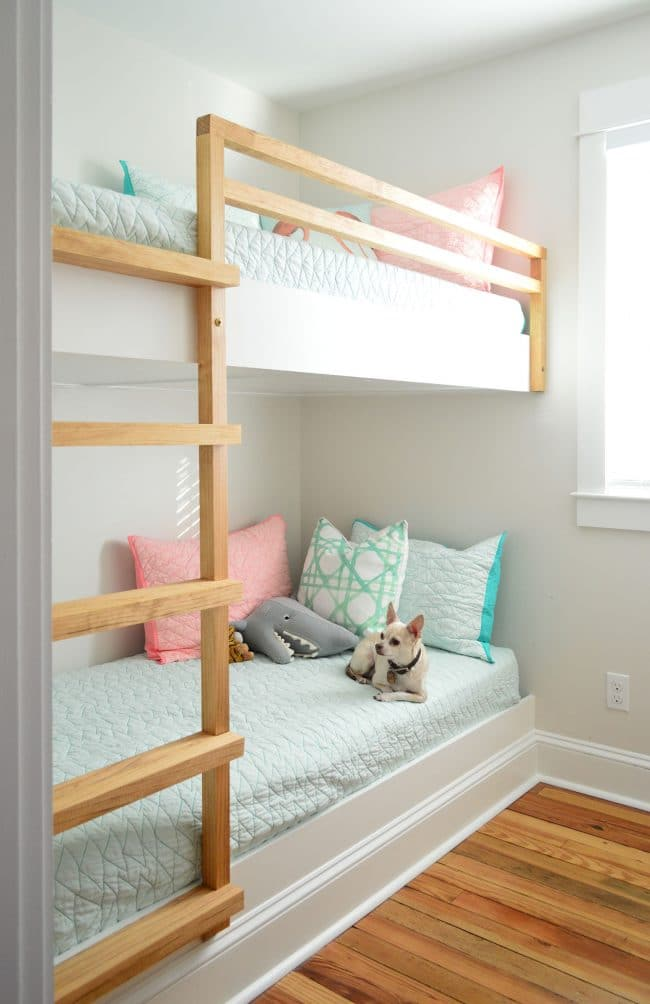 Diy Built In Wall To Bunk Beds With Chihuahua On Bottom