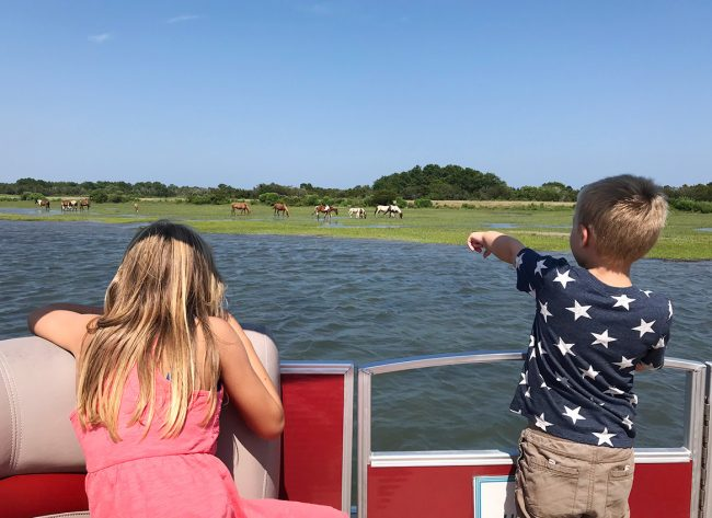 chincoteague wild ponies seen from boat with children