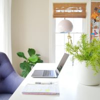 The Easiest House Plants & The Best Faux Plants I've Found