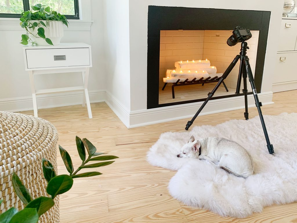 Camera on tripod set up to take photo of fireplace with chihuahua sleeping on fur rug underneath