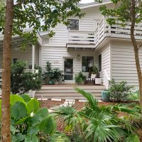 Our Front Porch: Big Plans & Even Bigger Plants