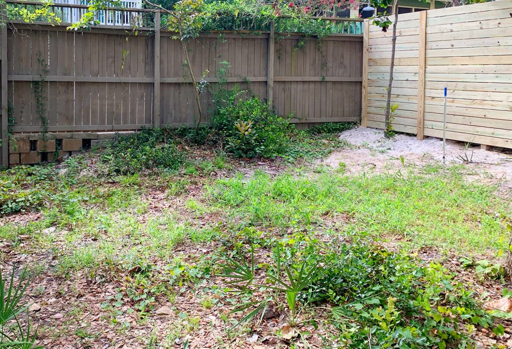 Weed covered yard with two brown fences in the background