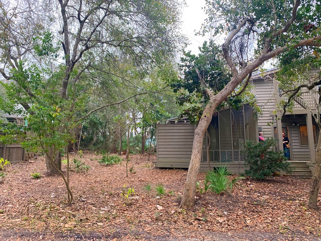 Before photo of house with empty backyard covered in dead leaves