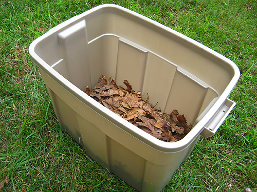 dried leaves in bottom of homemade compost bin