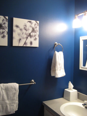 Check out link below to a makeover of a kids  nautical windowless bathroom. Your paint color for windowless bathrooms