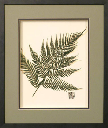 austral-fern-authentic-preserved-botanical