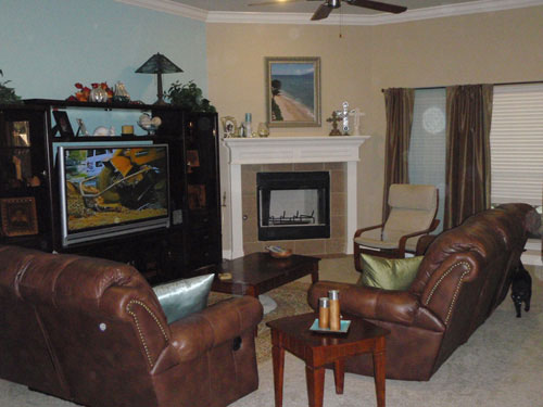 before-mood-board-makeover-picture-living-room