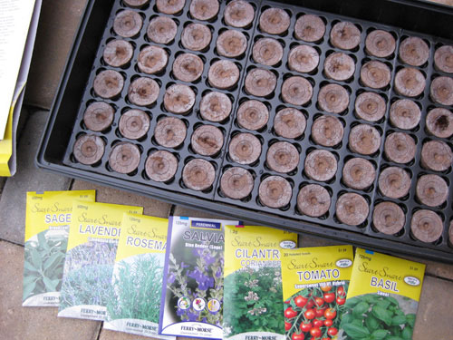 Growing Herbs And Vegtables From Seeds