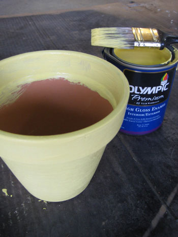 adding yellow paint to terra cotta pot