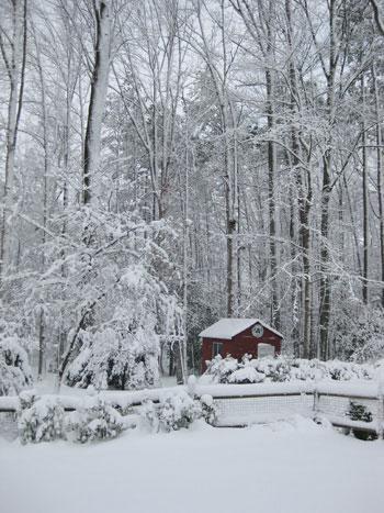 richmond-snowstorm-of-2009