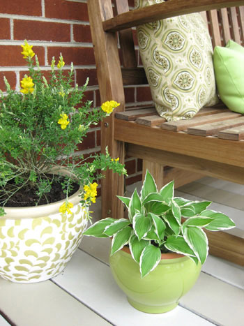 green-yellow-tan-brown-front-porch-makeover-planters-before-and-after