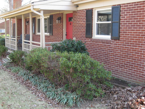 Landscaping Shrubs Around House : When we mentioned that the year old bushes around our house were