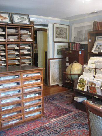 map-store-prints-and-old-books-and-botanical
